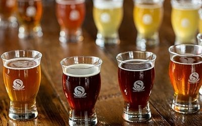 New Denver Beers at Satire