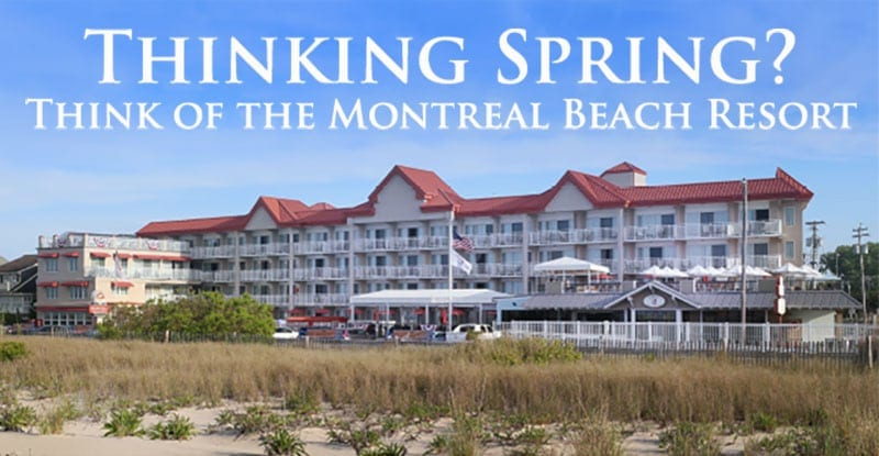 Cape May Spring Specials Banner